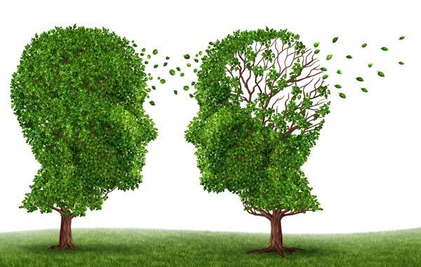 alzheimer ile ilgili görsel sonucu
